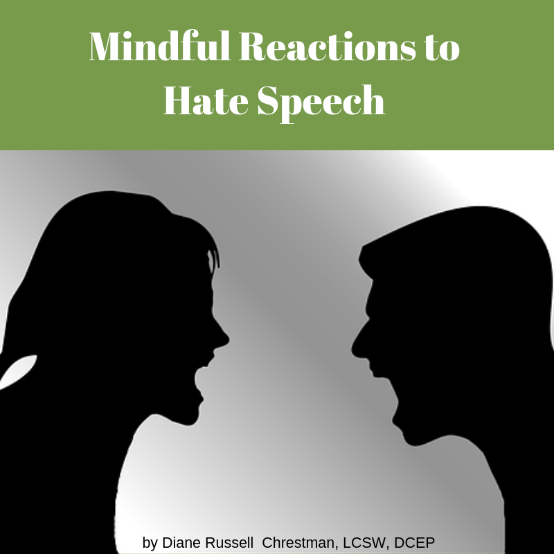 Mental Health Counseling and Psychotherapy | Suwanee, GA | Mindful Reactions to Hate Speech